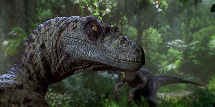 jurassic park raptor