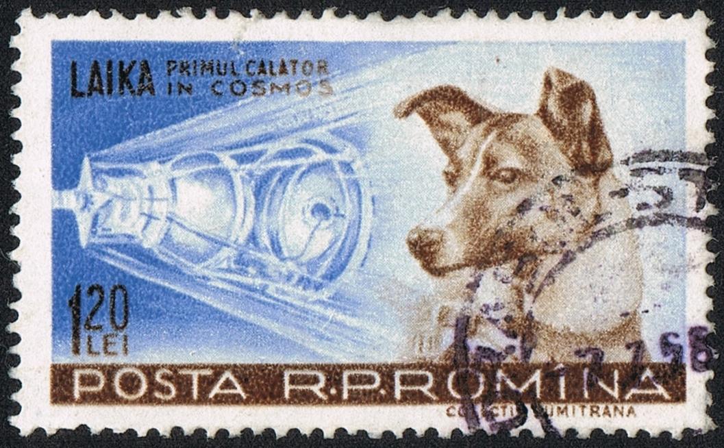 Posta_Romana_-_1959_-_Laika_120_B