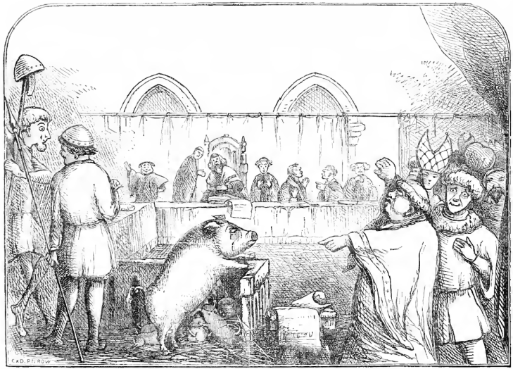 a pig on trial animal trials procès animaux medieval