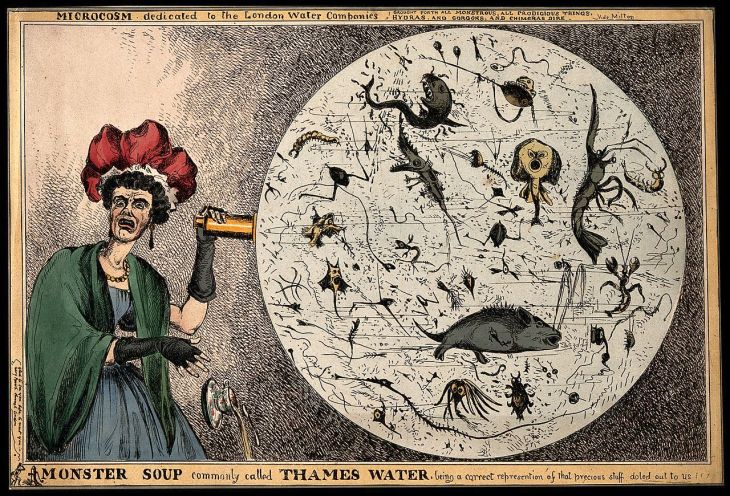Monster_Soup_commonly_called_Thames_Water._Wellcome_V0011218